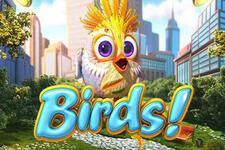 Birds Bonus ohne Einzahlung auf Stakers